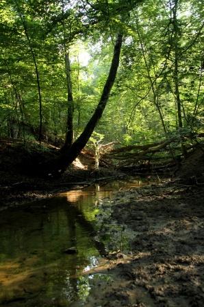 Fram till nu för oss ett okänt vattendrag